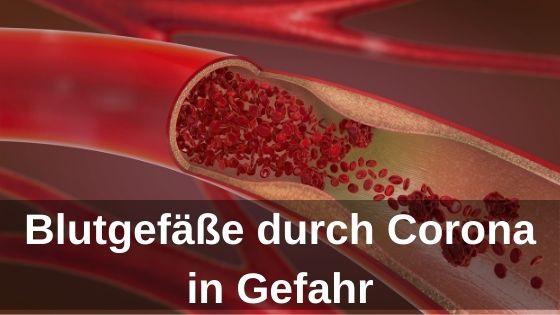 Blutgefäße durch Corona in Gefahr