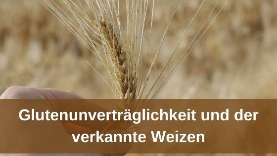 Glutenunverträglichkeit und der verkannte Weizen