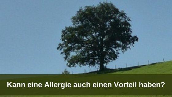 Kann eine Allergie auch einen Vorteil haben